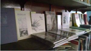 bookshelf_reduced2